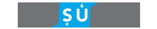 ES Consulting 4U Logo